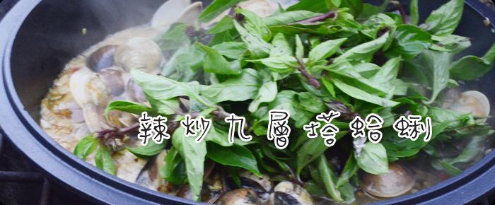 http://info.mountrakaso.com/outdoor-cooking/dutch-oven-recipes/la-chao-jiu-ceng-ta-ha-li